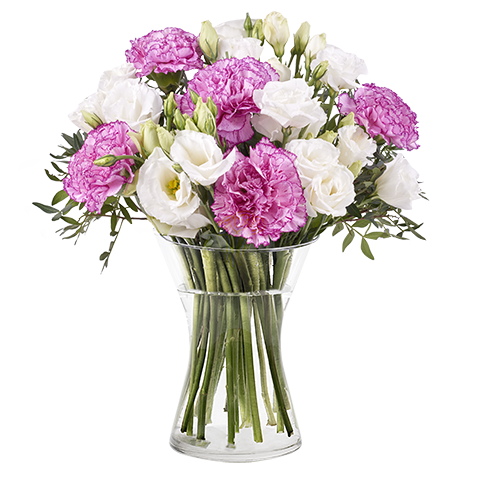 Bahamas: Lisianthus and Pink Carnations