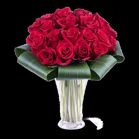 Liebeshingabe: 25 Rote Rosen