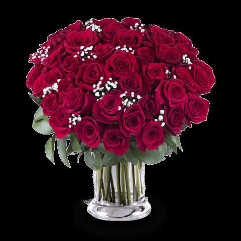 Amour Véritable : 45 Roses Rouges