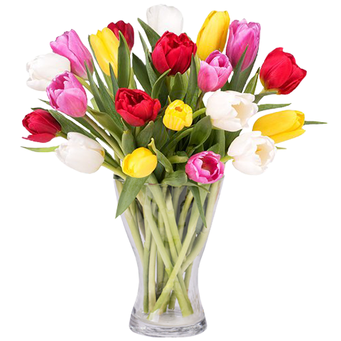Colourful Spring: 30 Mixed Tulips