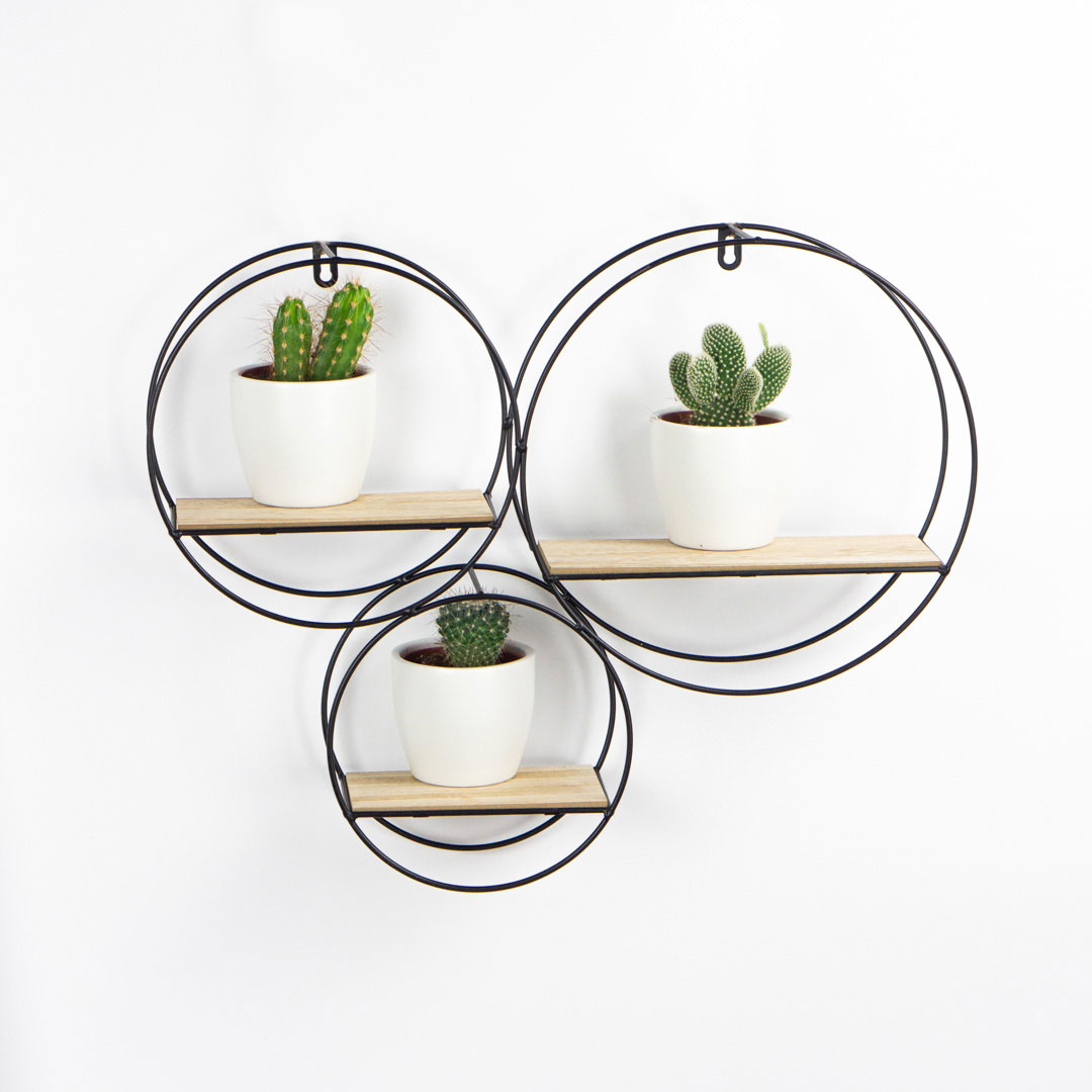 Set Circular Flotante y Cactus